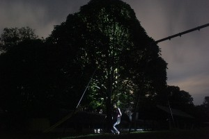 Girl on swing with backlit tree